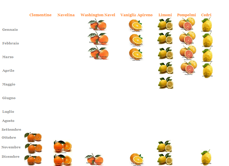 Calendario raccolte for Calendario concimazione agrumi